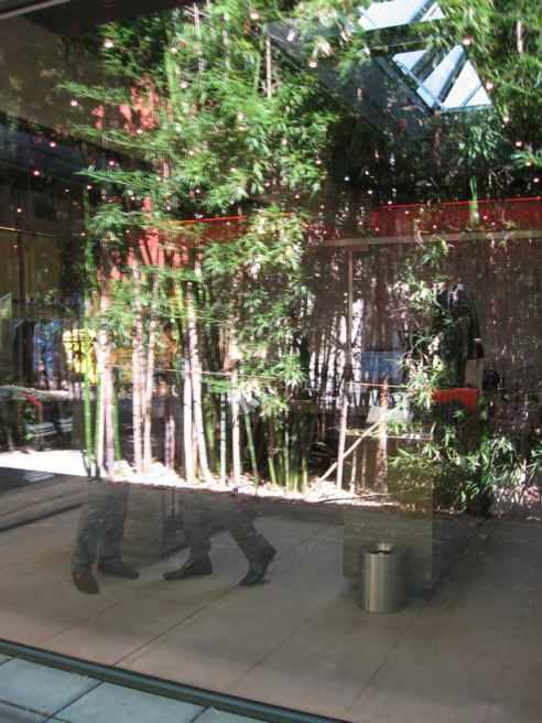 """Hugo Boss"" store Mitte bamboo reflection"