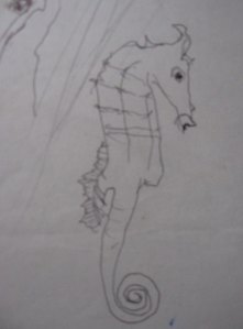 sea_horse_1