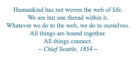 All things connect, Chief Seattle