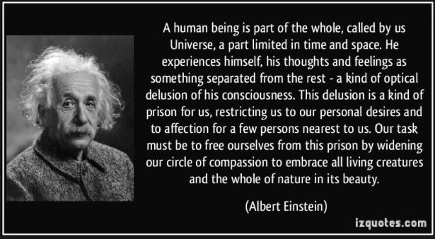 Einstein, Optical Delusion