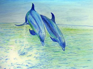 "Carol Keiter's drawing of dolphins jumping, one of the characters in ""Adora & Vitali: A Spin on the Matter of Motion"""