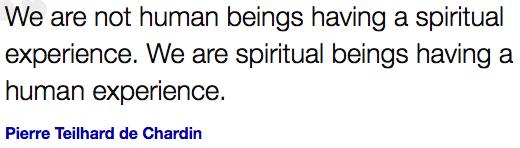 Spiritual Beings ,Human experience, Pierre Teilhard de Chardin