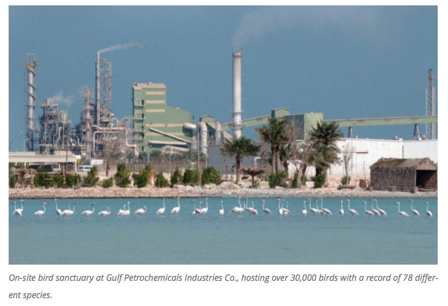 Bird sanctuary,  Gulf Petrochemicals Industries Co.