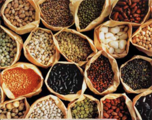 micro-nutrients, beans, seeds, nuts