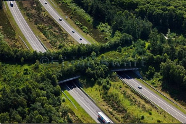 Ecoduct, Wildlife Bridge , the Netherlands, alizul2