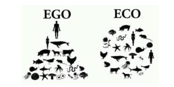 Ego vs Eco | Ecological Thinking for Business Transformation | The Nature of Business