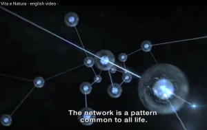 Vita e Natura - Life and Nature - video intro of Fritjof Capra and Pier Luigi Luisi's book - The Systems View of Life A Unifying Vision