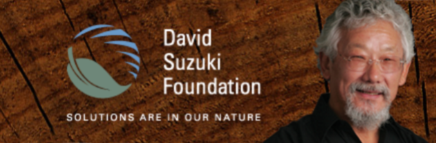 David Suzuki Foundation - Small steps make a big difference on the path to living more sustainably.