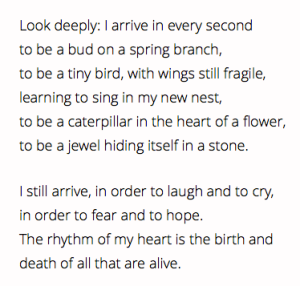 poem, Thich Nhat Hanh, Look Deeply