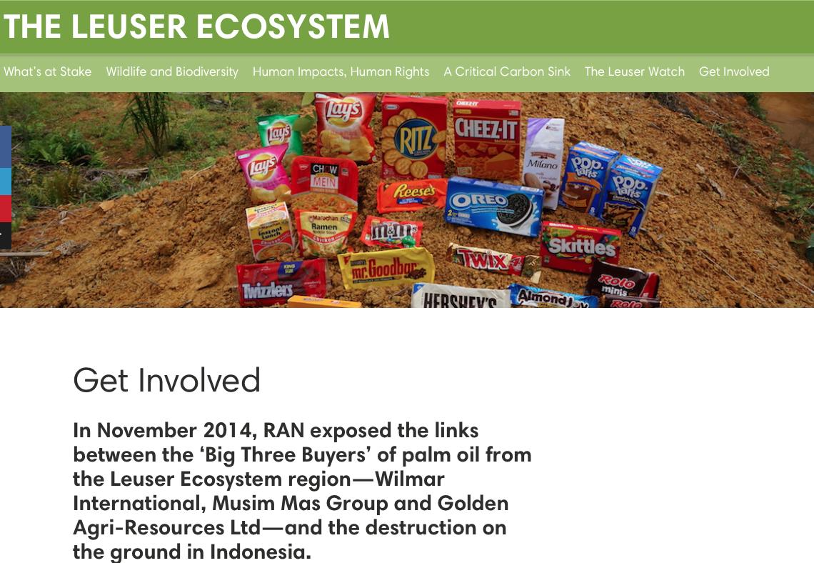 Big Three Buyers' of palm oil from the Leuser Ecosystem region—Wilmar International, Musim Mas Group, Golden Agri-Resources Ltd, The Leuser Ecosystem, Big Three Buyers suppliers, Palm Oil Plantations