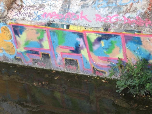 graffiti along fleuve Lez, Montpellier, France Oct. 2017