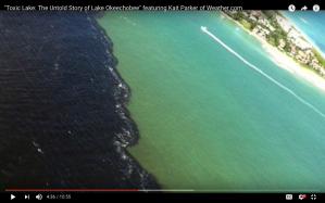 Toxic Lake Untold Story of Lake Okeechobee Kait Parker