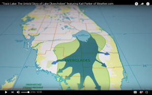 Lake Okeechobee drained south for 6,000 years, nourishing the everglades.