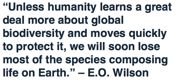 Unless Humanity Learns about Global Biodiverity, We Will Lose Most Species - E.O. Wilson