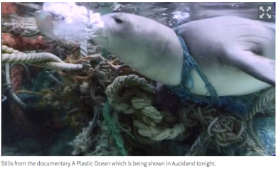 Plastic Ocean Still from Australian documentary NZHerald
