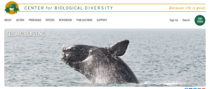 Center for Biological Diversity, sonar, seismic testing