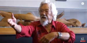 ecology, global warming, climate change, the natural world, ecocide, human extinction, Dr David Suzuki