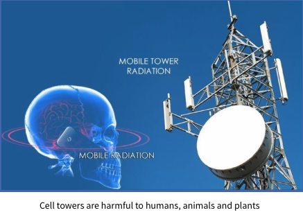 Cell towers are harmful to humans, animals and plants -global indoor health network