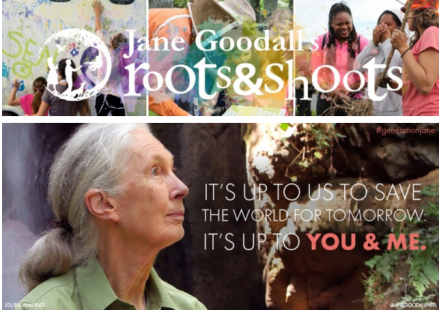 Jane Goodall, Roots and Shoots
