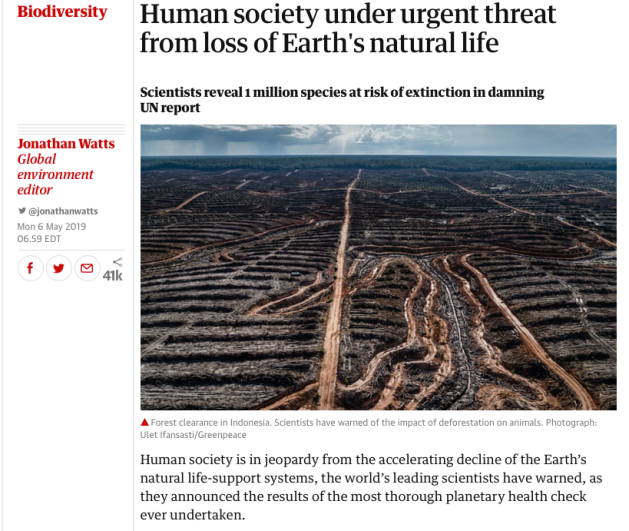 Scientists, 1 million species at risk of extinction, UN report, Human Society Urgent Threat UN Report, The Guardian