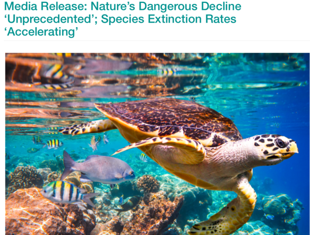 Intergovernmental Science-Policy Platform on Biodiversity and Ecosystem Services, IPBES, Media Release, Nature's Dangerous Decline, Unprecedented Loss of Species, Species Extinction Rates Accelerating