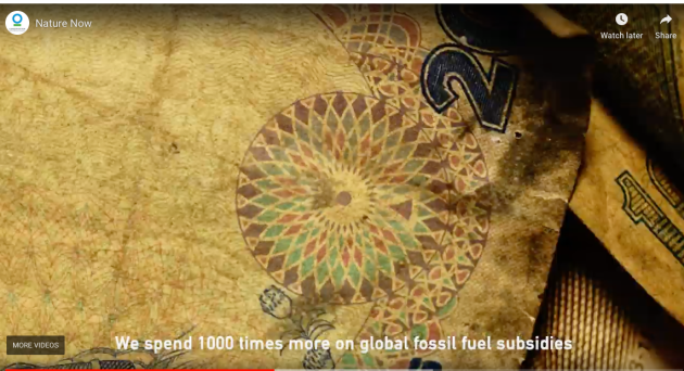 nature_now_video_1000_times_more_spending_fossil_fuels